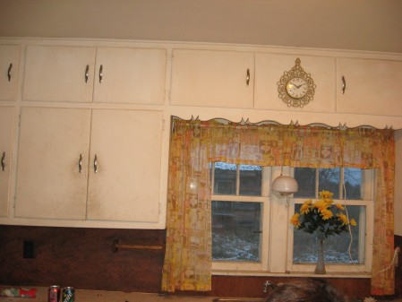 Kitchen cupboard & window